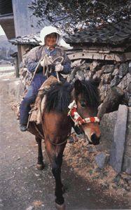 「対州馬」に乗ったオバチャン