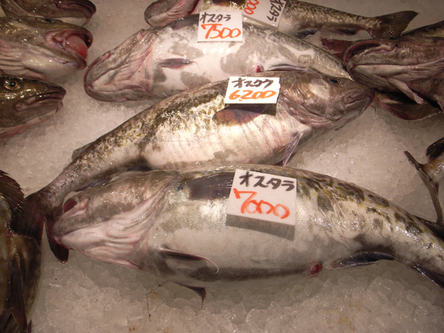 鶴岡(山形県)の市場で見た鱈